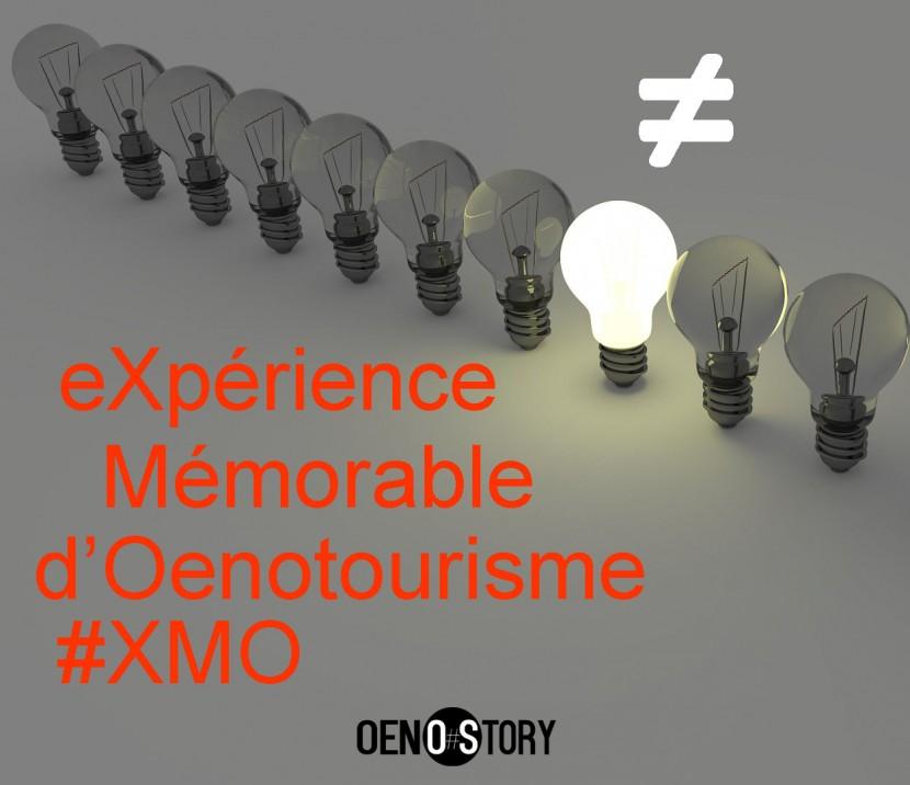 OENOSTORY Expérience Mémorable D'Oenotourisme Se différencier