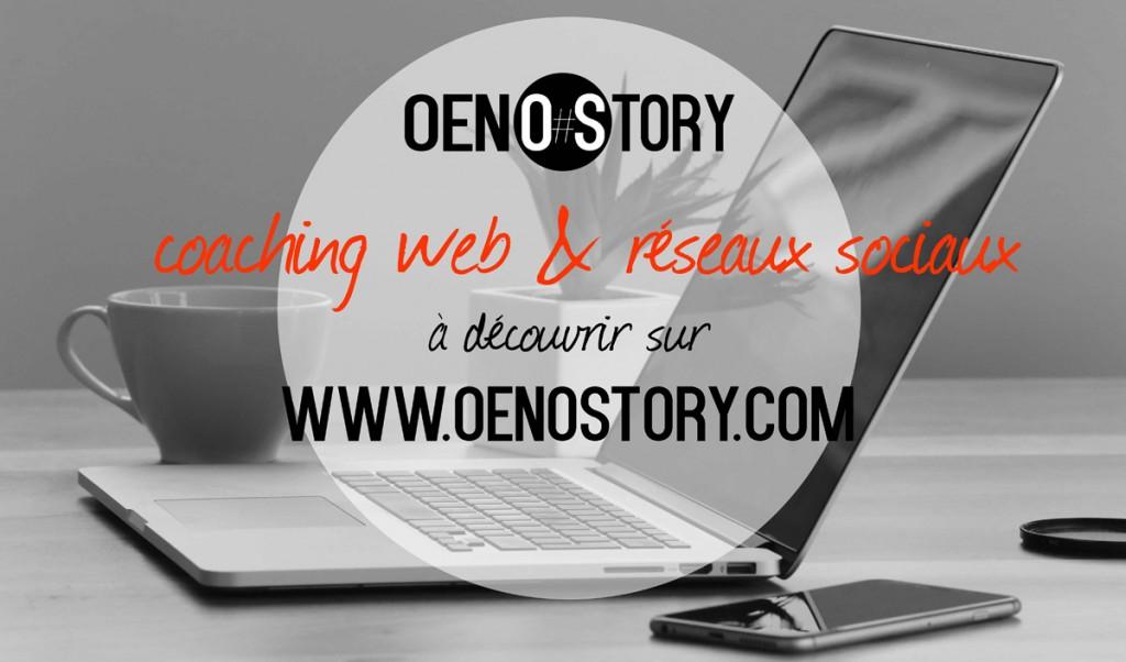 Oenostory coaching web et réseaux sociaux stratégie social media