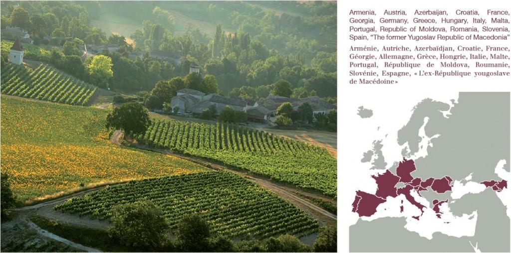 Un symposium oenotourisme Iter Vitis France à Cahors en septembre Oenostory
