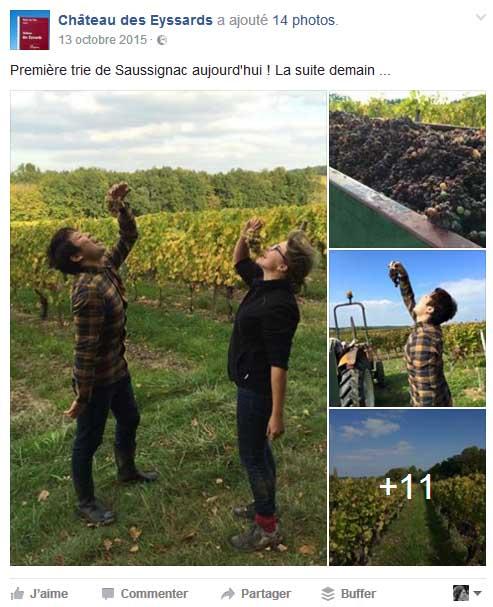 Château des Eyssards Saussignac Bergerac Vendanges sur les réseaux sociaux
