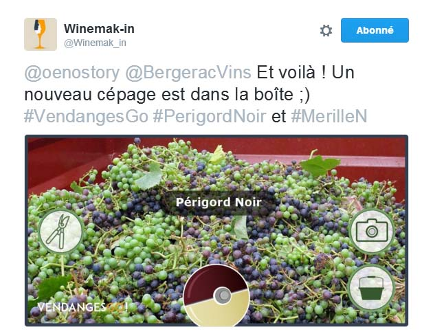 Cépages vendanges Winemak-in #VendangesGo vendanges sur les réseaux sociaux