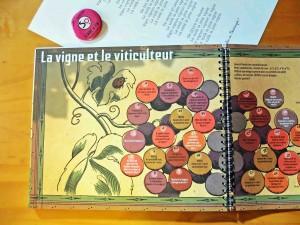 Vignes et vins un monde à découvrir Sandrine Duclos Cécile Gallineau Oenotourisme avec des enfants Oenostory