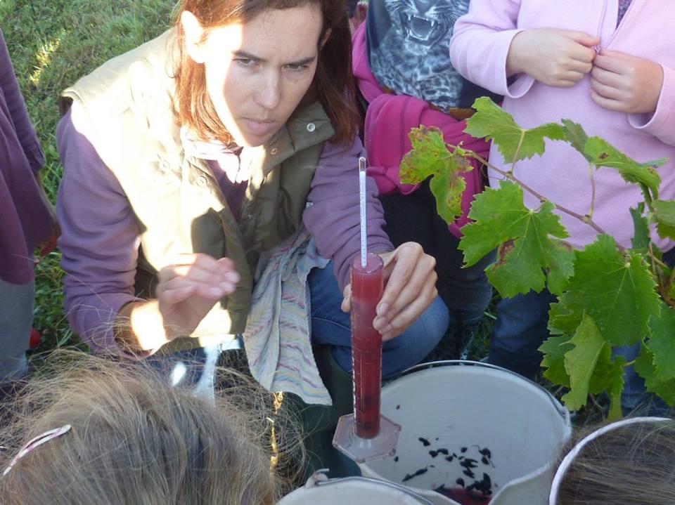 Laurence Borie Château La Forêt Bergerac Ecoles en vendanges SO Femme et Vin Accueillir une école au domaine